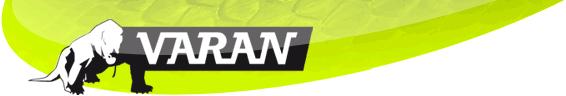Varan Motors